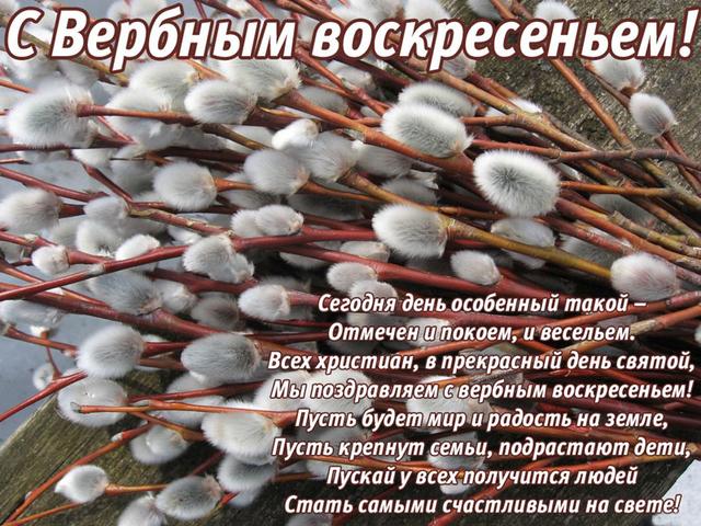 http://s5.uploads.ru/pLDyW.jpg