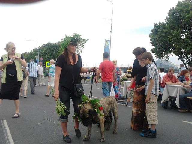 Наши собаки, друзья и гости, кот Мензурка - Страница 2 PUC8s