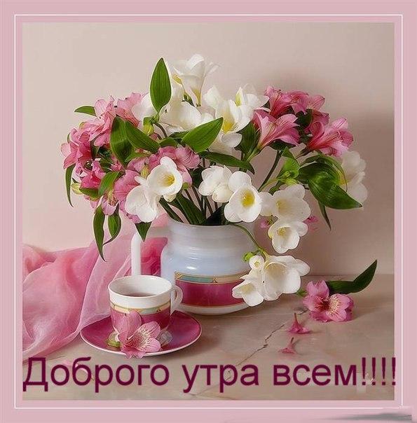 http://s5.uploads.ru/qg39c.jpg