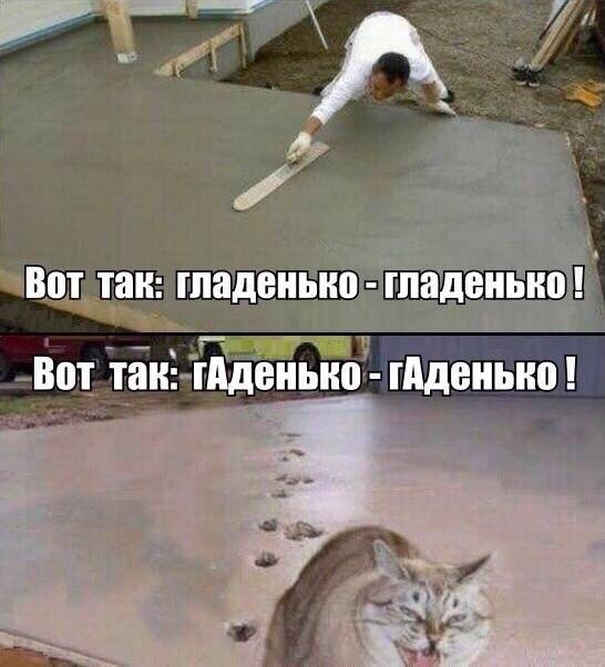 http://s5.uploads.ru/r9X3B.jpg