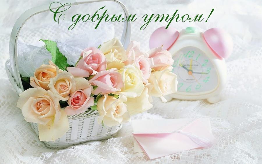 http://s5.uploads.ru/sDVKa.jpg