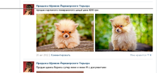 http://s5.uploads.ru/t/07Smb.png