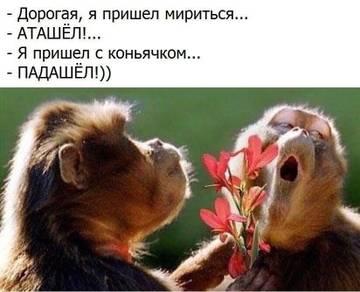 http://s5.uploads.ru/t/08hQI.jpg