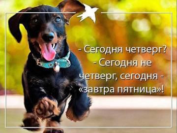 http://s5.uploads.ru/t/0cBai.jpg