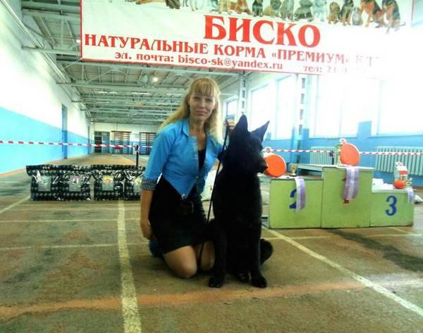 http://s5.uploads.ru/t/13Vq5.jpg