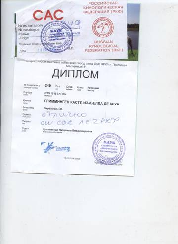 http://s5.uploads.ru/t/19xbn.jpg