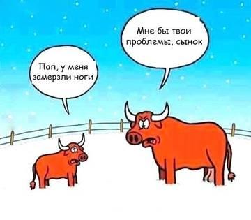 http://s5.uploads.ru/t/1Czwk.jpg