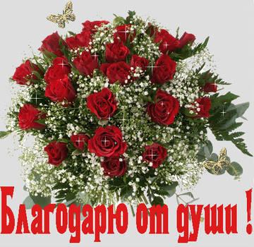 http://s5.uploads.ru/t/1gR0k.jpg