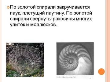 http://s5.uploads.ru/t/1kTd6.jpg