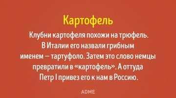 http://s5.uploads.ru/t/1sVSD.jpg