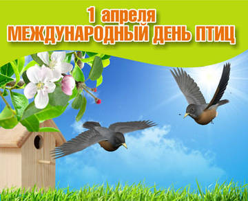 http://s5.uploads.ru/t/2amPh.jpg