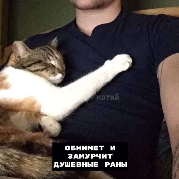 http://s5.uploads.ru/t/2oyXD.jpg
