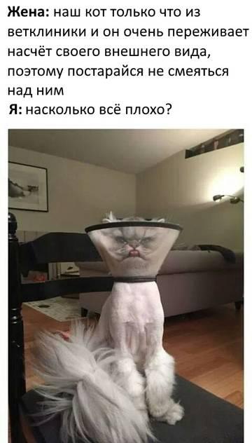 http://s5.uploads.ru/t/2vd4R.jpg