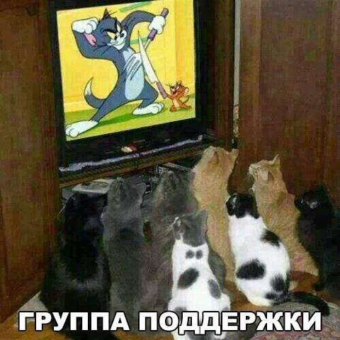 http://s5.uploads.ru/t/2yzFj.jpg