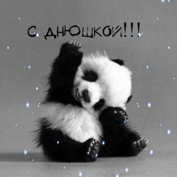 http://s5.uploads.ru/t/3RT0o.jpg