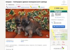 http://s5.uploads.ru/t/3Sp61.png