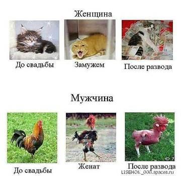 http://s5.uploads.ru/t/4RiDm.jpg
