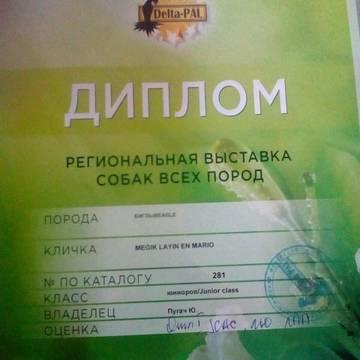 http://s5.uploads.ru/t/4ajsd.jpg