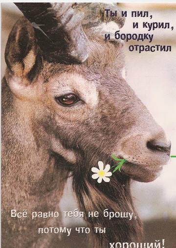 http://s5.uploads.ru/t/4iaKL.jpg