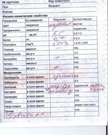 http://s5.uploads.ru/t/4ydTe.jpg