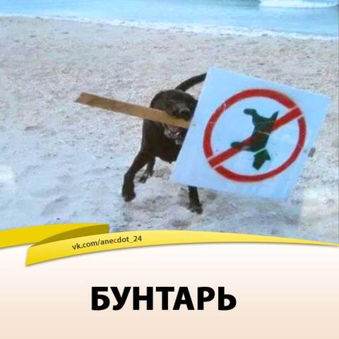 http://s5.uploads.ru/t/5aDw3.jpg