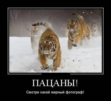 http://s5.uploads.ru/t/6b2Oc.jpg