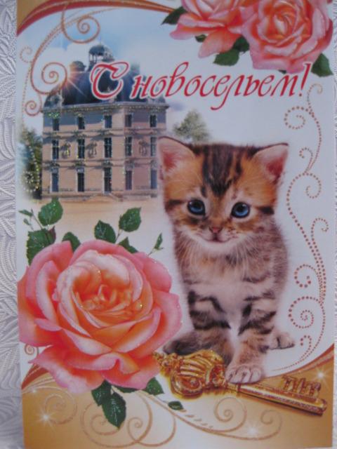 http://s5.uploads.ru/t/6m2jD.jpg
