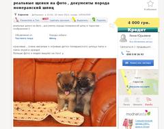 http://s5.uploads.ru/t/6qb9r.png