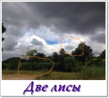 http://s5.uploads.ru/t/7Ggcy.jpg