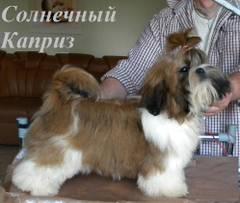 http://s5.uploads.ru/t/7dtG1.jpg