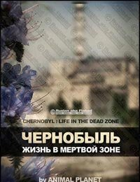 http://s5.uploads.ru/t/7ekca.jpg