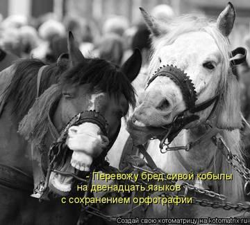 http://s5.uploads.ru/t/7w0pr.jpg