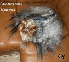 http://s5.uploads.ru/t/83LI2.jpg