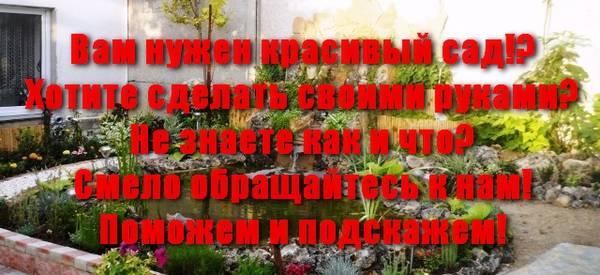 http://s5.uploads.ru/t/9d5gF.jpg