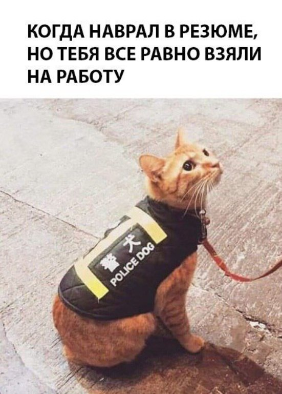 http://s5.uploads.ru/t/AP7zm.jpg