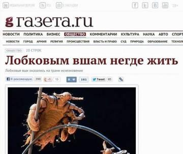 http://s5.uploads.ru/t/BLeX7.jpg
