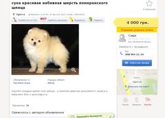 http://s5.uploads.ru/t/BUqlJ.png