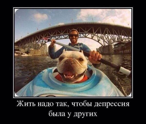 http://s5.uploads.ru/t/BVfHJ.jpg