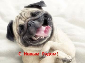 http://s5.uploads.ru/t/BgPaU.jpg