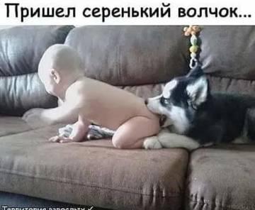 http://s5.uploads.ru/t/BqKRS.jpg