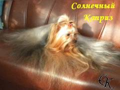 http://s5.uploads.ru/t/BvfbU.jpg