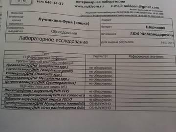http://s5.uploads.ru/t/CLpe3.jpg
