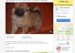 http://s5.uploads.ru/t/DB7wQ.png