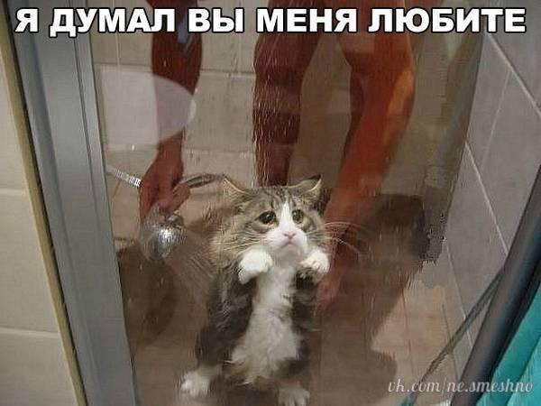 http://s5.uploads.ru/t/DRFmM.jpg