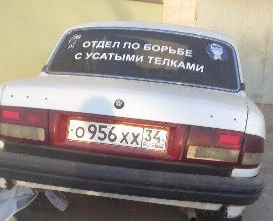 http://s5.uploads.ru/t/DghzJ.jpg
