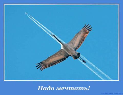 http://s5.uploads.ru/t/Dgstm.jpg