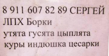 http://s5.uploads.ru/t/DySOW.jpg