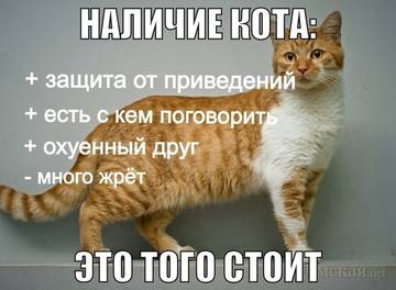 http://s5.uploads.ru/t/DzpFv.jpg