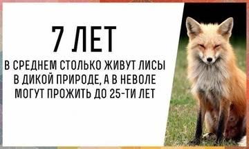 http://s5.uploads.ru/t/EIMe2.jpg