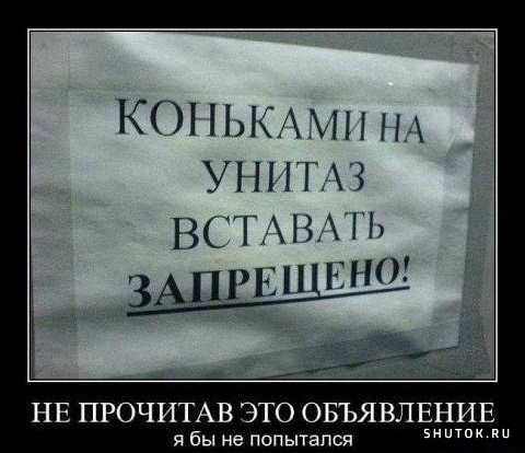 http://s5.uploads.ru/t/EYhS7.jpg